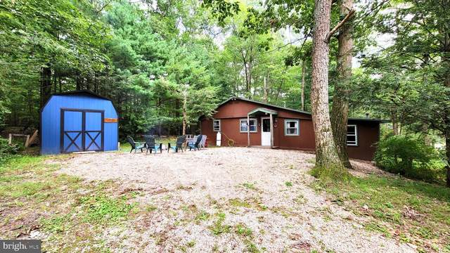 53 Pheasant Trail, ORRTANNA, PA 17353 (#PAAD2001396) :: ExecuHome Realty