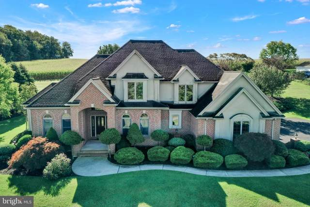 575 Mcintosh Lane, ANDREAS, PA 18211 (#PASK2001432) :: The Dailey Group
