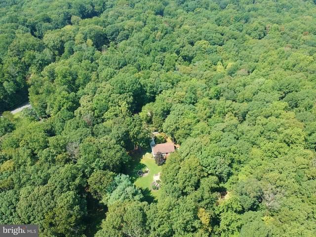 13897 Dave Drive, NOKESVILLE, VA 20181 (#VAPW2008824) :: Great Falls Great Homes