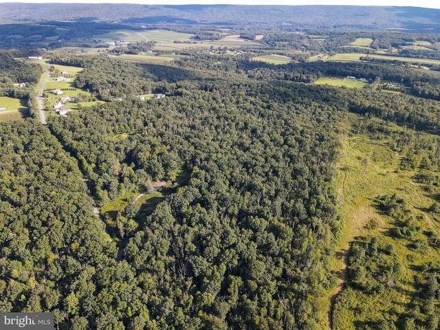 Archery Club Road Lot 2, NEW RINGGOLD, PA 17960 (#PASK2001438) :: The Joy Daniels Real Estate Group