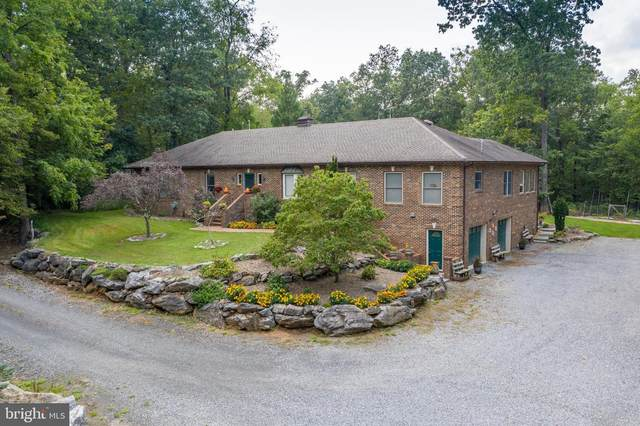 1528 Stringtown Road, BERRYVILLE, VA 22611 (#VACL2000290) :: Bruce & Tanya and Associates