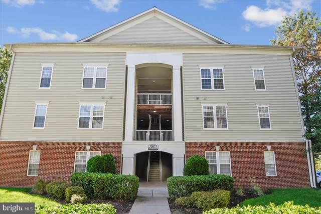22607 Blue Elder Terrace #102, BRAMBLETON, VA 20148 (#VALO2008636) :: The Putnam Group