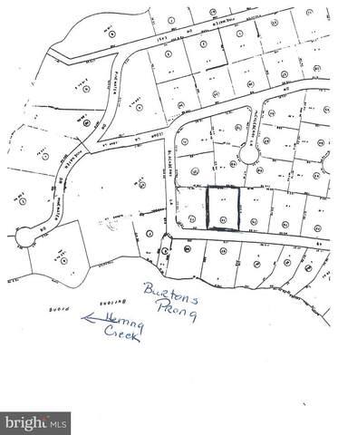 3 Sloan Road, HARBESON, DE 19951 (#DESU2006584) :: Atlantic Shores Sotheby's International Realty