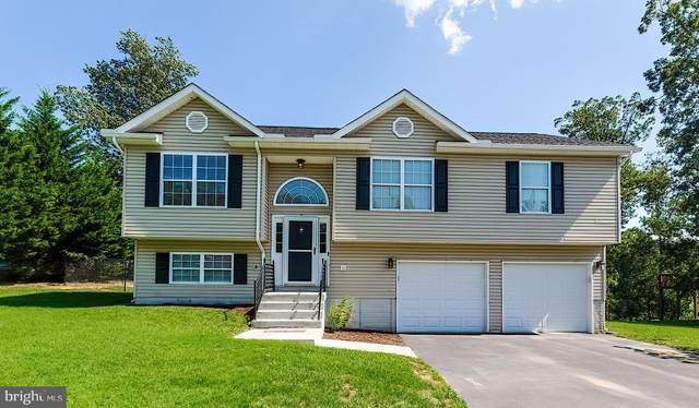 166 Leviticus Drive, BUNKER HILL, WV 25413 (#WVBE2002722) :: Colgan Real Estate