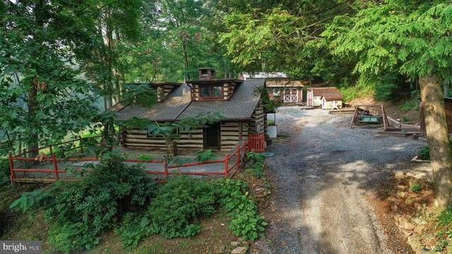 383 Michters Road, NEWMANSTOWN, PA 17073 (#PALN2001686) :: Murray & Co. Real Estate