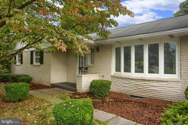 174 Creek Road, NEWPORT, PA 17074 (#PAPY2000464) :: TeamPete Realty Services, Inc