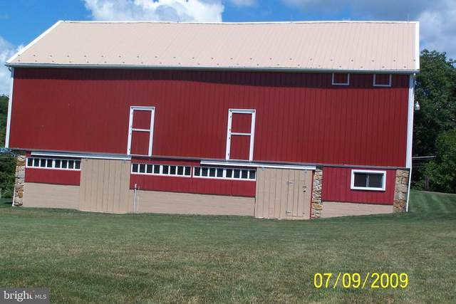 970 Long Run Road, PINE GROVE, PA 17963 (#PASK2001452) :: The Craig Hartranft Team, Berkshire Hathaway Homesale Realty