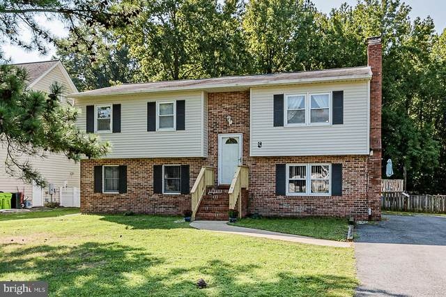 315 Larch Place, STEVENSVILLE, MD 21666 (#MDQA2001090) :: Realty Executives Premier