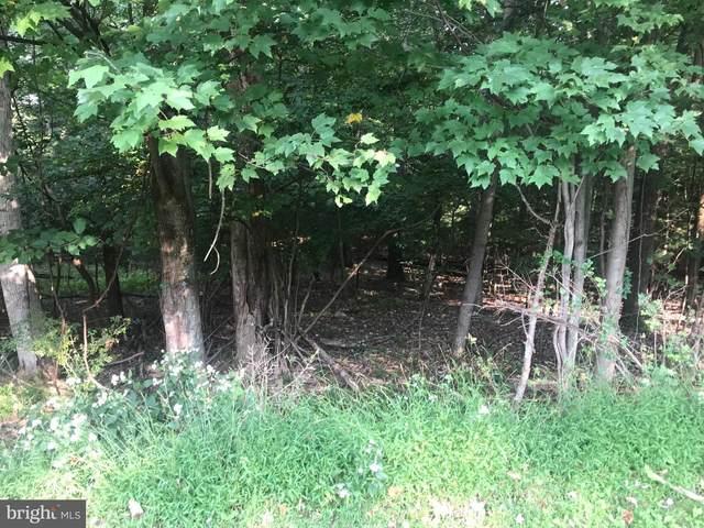 2412 Crow Foot Drive, AUBURN, PA 17922 (#PASK2001456) :: The Joy Daniels Real Estate Group
