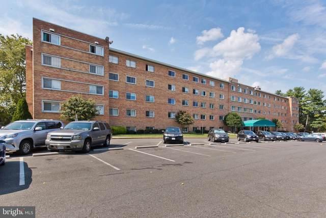 5101 8TH Road S #203, ARLINGTON, VA 22204 (#VAAR2005376) :: City Smart Living
