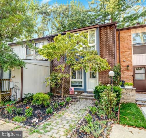 10569 Tolling Clock Way, COLUMBIA, MD 21044 (#MDHW2005070) :: The Maryland Group of Long & Foster Real Estate