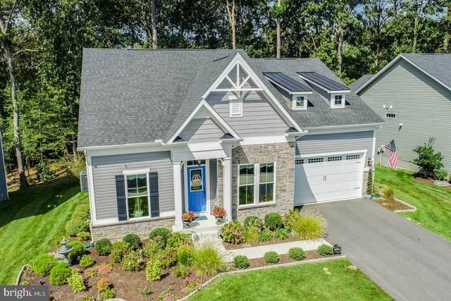 41279 Gloucester Drive, REHOBOTH BEACH, DE 19971 (#DESU2006712) :: Linda Dale Real Estate Experts
