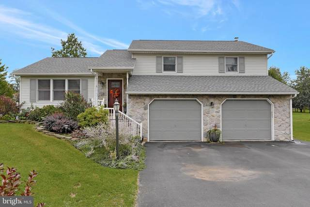 224 Chestnut Drive, SHIPPENSBURG, PA 17257 (#PACB2003312) :: CENTURY 21 Home Advisors