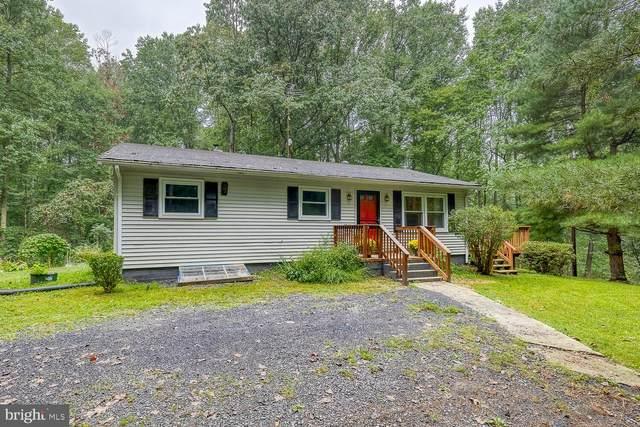 3838 Lea Road, MARSHALL, VA 20115 (#VAFQ2001410) :: Colgan Real Estate