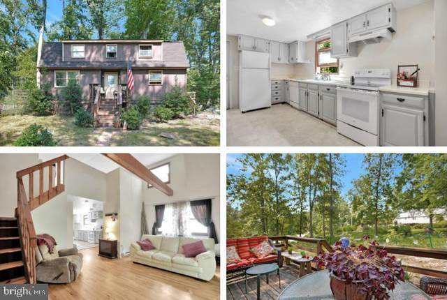 248 Mad Hatter Road, HARPERS FERRY, WV 25425 (#WVJF2001144) :: Gail Nyman Group