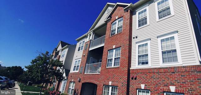 2498 Amber Orchard Court E #103, ODENTON, MD 21113 (#MDAA2010338) :: SURE Sales Group