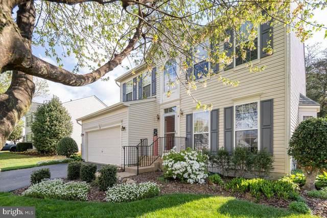 4 Wild Plum Court, STAFFORD, VA 22554 (#VAST2003640) :: Murray & Co. Real Estate