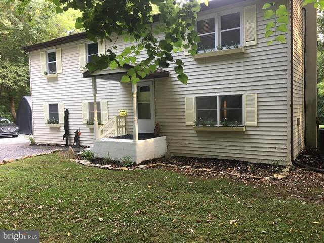 5934 Michele Drive, NARVON, PA 17555 (#PALA2005574) :: The Matt Lenza Real Estate Team