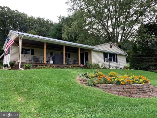 180 Sandy Hollow Road, SHERMANS DALE, PA 17090 (#PAPY2000466) :: The Joy Daniels Real Estate Group
