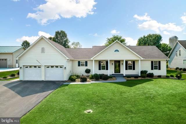 9871 Woodbine Way, NEW MARKET, VA 22844 (#VASH2000986) :: Dart Homes