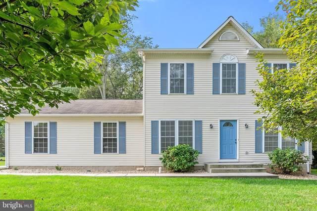 7160 King William Street, WARRENTON, VA 20187 (#VAFQ2001430) :: The Schiff Home Team