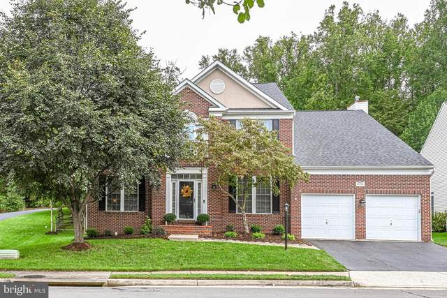 47196 Middle Bluff Place, STERLING, VA 20165 (#VALO2008878) :: Gail Nyman Group