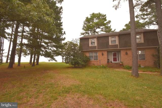 6213 Twin Point Road, CAMBRIDGE, MD 21613 (#MDDO2000698) :: Pearson Smith Realty