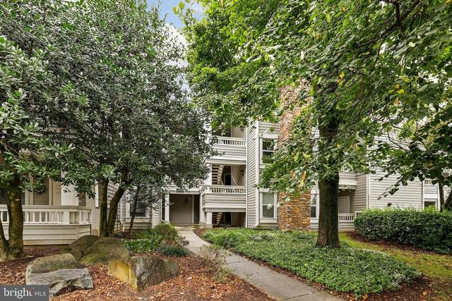 4417 Fair Stone Drive #306, FAIRFAX, VA 22033 (#VAFX2023124) :: AG Residential