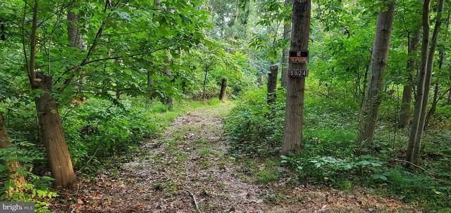5824 Woods Road, STEWARTSTOWN, PA 17363 (#PAYK2006582) :: CENTURY 21 Core Partners