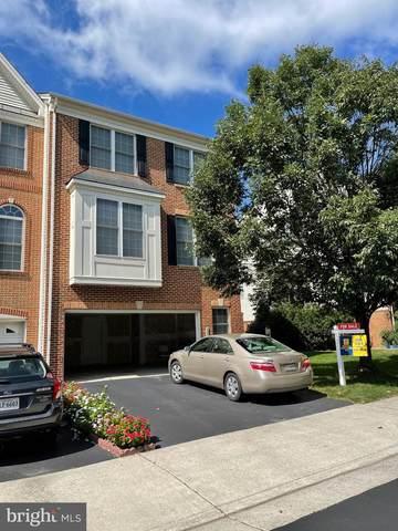 209 Grassy Ridge Terrace, PURCELLVILLE, VA 20132 (#VALO2008920) :: Murray & Co. Real Estate