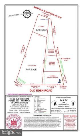 28422 Old Eden Road, FRUITLAND, MD 21826 (#MDWC2001570) :: The Allison Stine Team