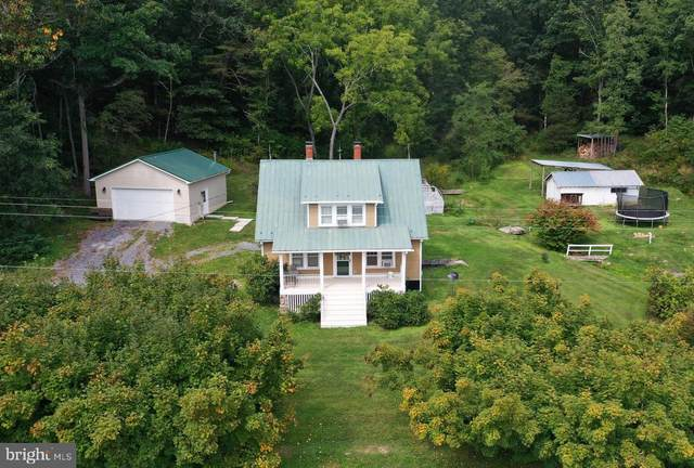 3191 State Road Route 259 N, WARDENSVILLE, WV 26851 (#WVHD2000310) :: Berkshire Hathaway HomeServices McNelis Group Properties