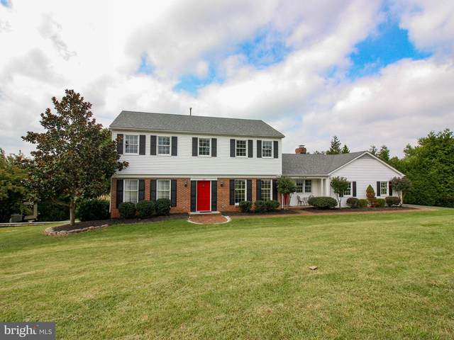 625 Bellview Avenue, WINCHESTER, VA 22601 (#VAWI2000590) :: ExecuHome Realty