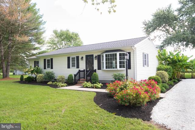 5519 Mount Holly Road, EAST NEW MARKET, MD 21631 (#MDDO2000706) :: Gail Nyman Group