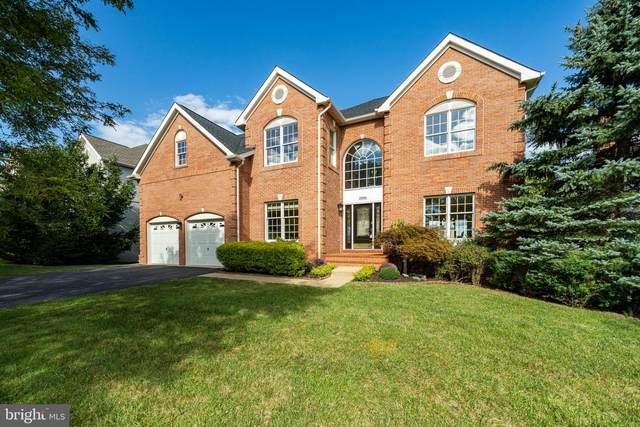 19956 Hazeltine Place, ASHBURN, VA 20147 (#VALO2008998) :: Colgan Real Estate