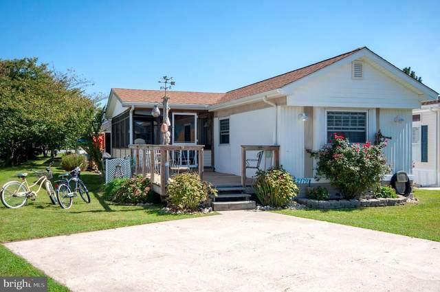 21797 D Street #13595, REHOBOTH BEACH, DE 19971 (#DESU2006896) :: Linda Dale Real Estate Experts