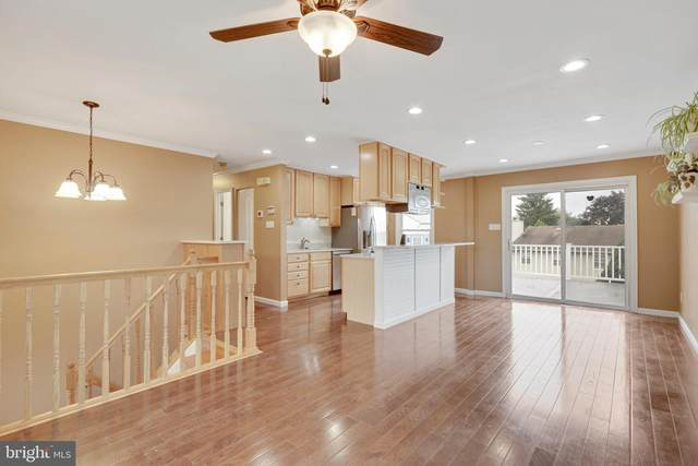 743 Obrecht Road, SYKESVILLE, MD 21784 (#MDCR2002664) :: ExecuHome Realty