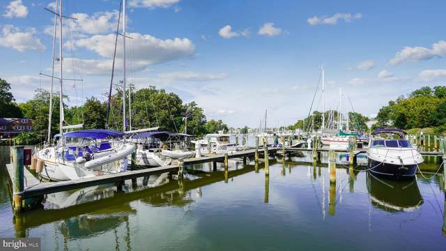 939 King James Landing Road, ANNAPOLIS, MD 21403 (#MDAA2010736) :: The Sky Group