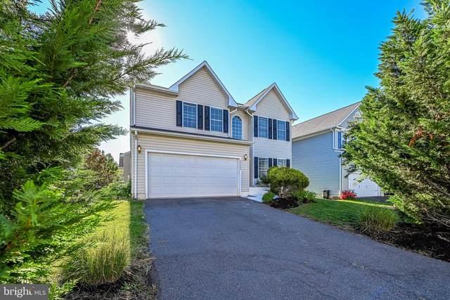 25905 Rickmansworth Lane, CHANTILLY, VA 20152 (#VALO2009040) :: Debbie Dogrul Associates - Long and Foster Real Estate