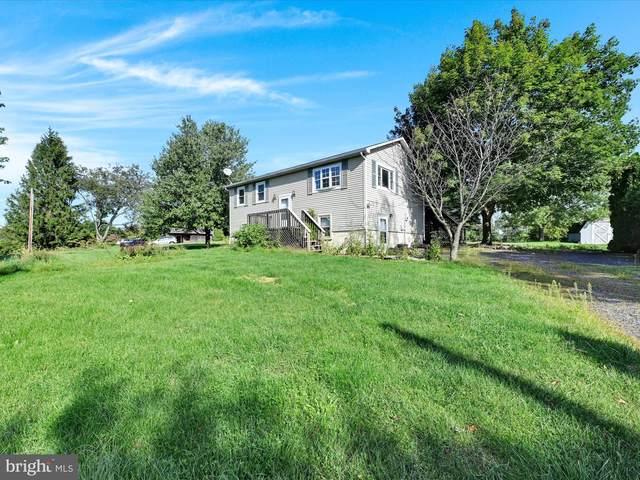 1418 Stag Drive, AUBURN, PA 17922 (#PASK2001550) :: Ramus Realty Group