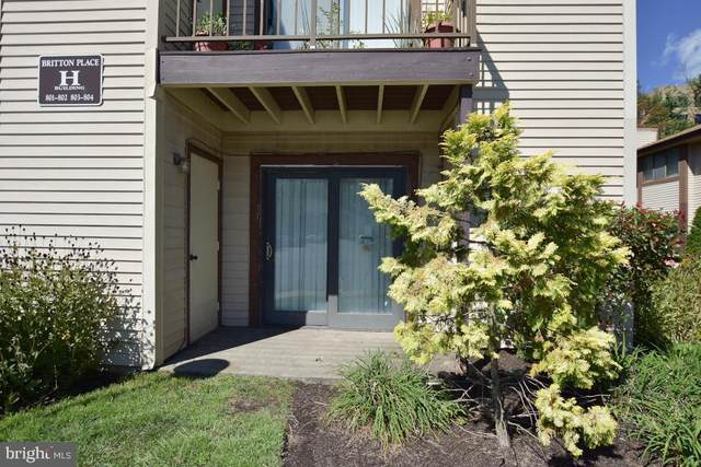 801 Britton Place, VOORHEES, NJ 08043 (#NJCD2008024) :: Holloway Real Estate Group