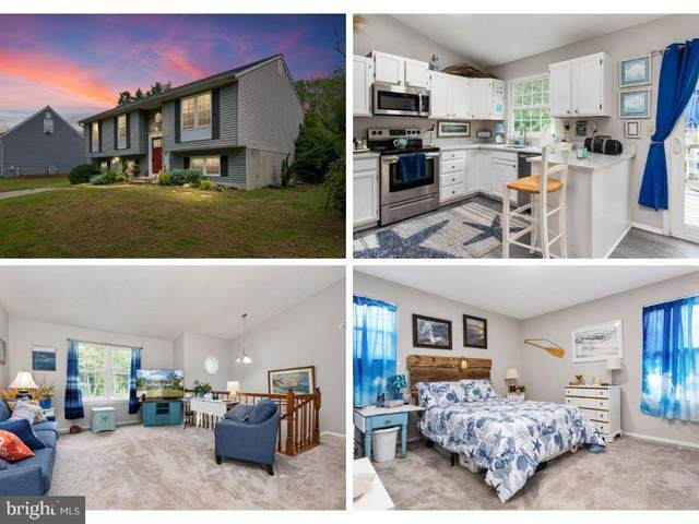 319 Nature Walk Lane, PASADENA, MD 21122 (#MDAA2010784) :: Berkshire Hathaway HomeServices PenFed Realty