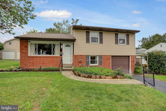 121 Henry Road, ENOLA, PA 17025 (#PACB2003442) :: TeamPete Realty Services, Inc