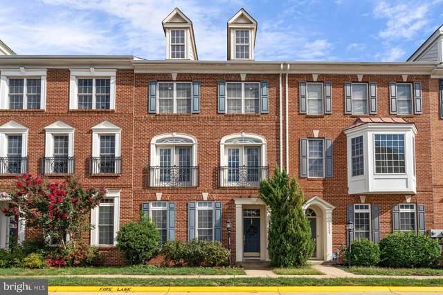 42446 Redstone Terrace, BRAMBLETON, VA 20148 (#VALO2009076) :: The Mike Coleman Team