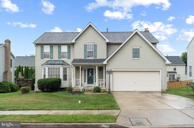 237 Ritterslea Court, OWINGS MILLS, MD 21117 (#MDBC2012096) :: The MD Home Team