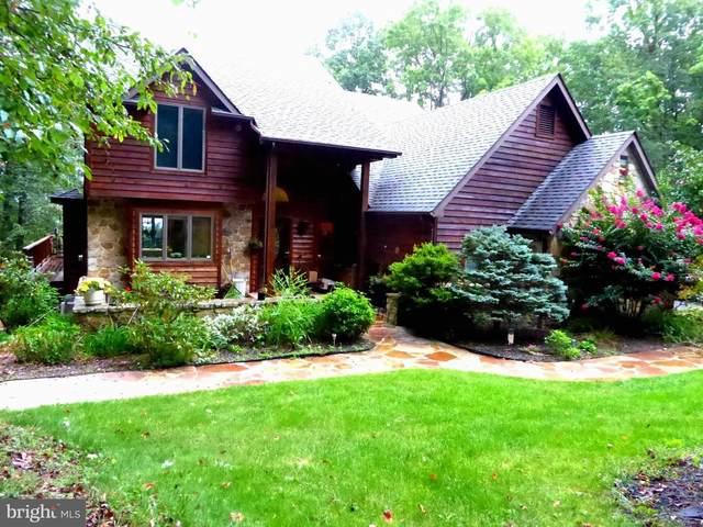 164 Cardinal Ridge Estate, ROMNEY, WV 26757 (#WVHS2000608) :: Key Home Team
