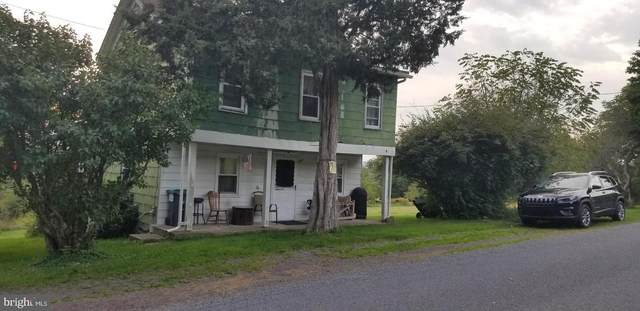 781 Green Mountain Road, ZION GROVE, PA 17985 (#PASK2001584) :: Flinchbaugh & Associates