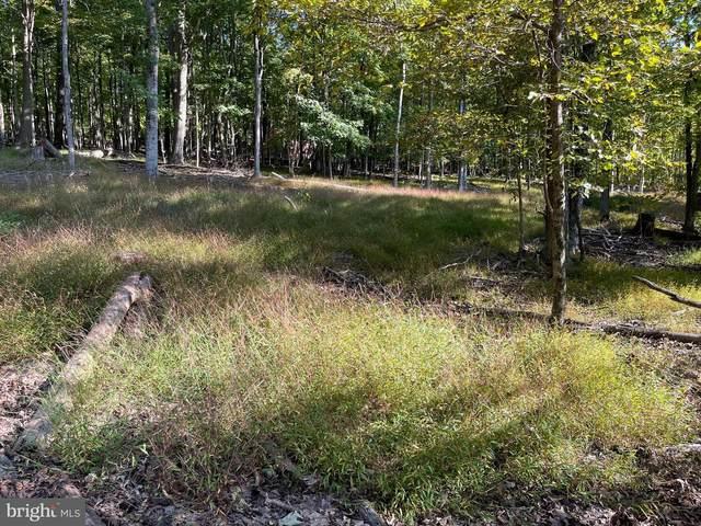 Iroquois Trail, BERKELEY SPRINGS, WV 25411 (#WVMO2000524) :: Pearson Smith Realty