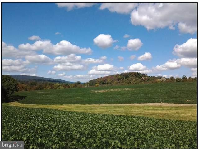 250 Waynesboro Pike, FAIRFIELD, PA 17320 (#PAAD2001504) :: The Joy Daniels Real Estate Group
