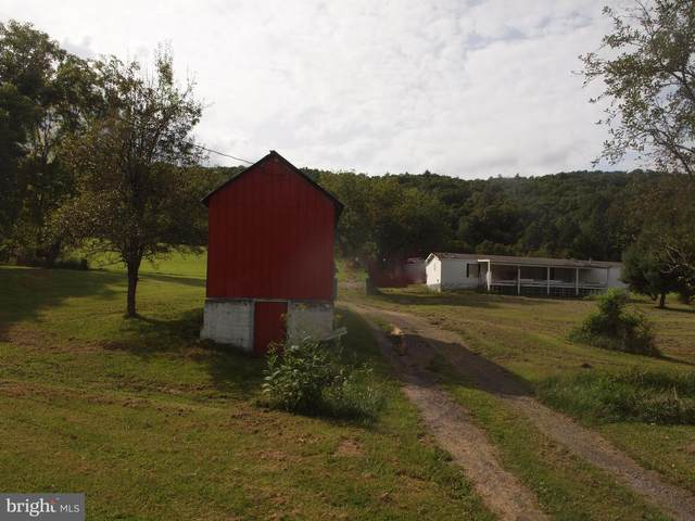 10 Hedge Apple Lane, BRANDYWINE, WV 26802 (#WVPT2000060) :: Arlington Realty, Inc.